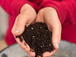 All About Soil & Organic Fertilizers - أسمدة عضوية ومغذيات