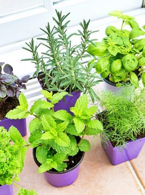 Herbs - أعشاب